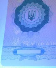 Диплом - свечение УФ (Мелитополь)